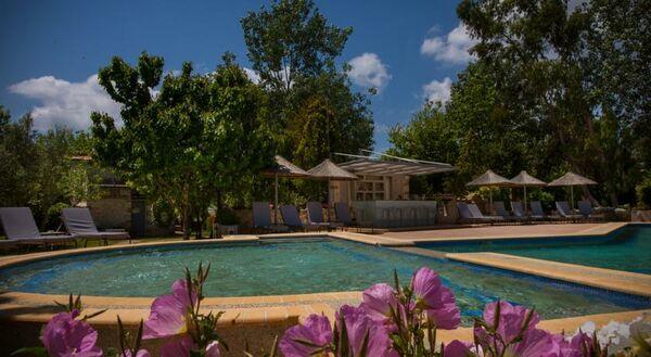 Holidays at Petrino Suites Hotel in Afitos, Kalithea Halkidiki