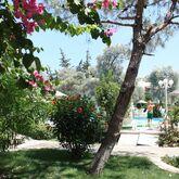 Toloman Bitez Park Apartments Picture 10