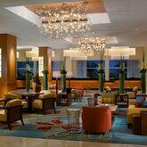 Hilton Orlando Hotel Picture 13