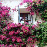 S'olivaret Hotel Picture 9