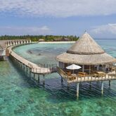 Furaveri Island Resort & Spa Picture 10