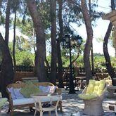 Vasilikos Beach Hotel Picture 7