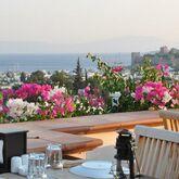 El Vino Hotel Picture 5