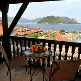 Marti Resort Deluxe Picture 9