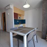 Safari Apartments Picture 5