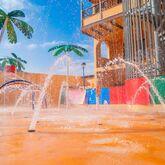 Coral Los Alisios Picture 8
