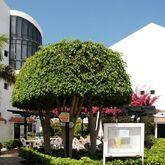 HG Cristian Sur Apartments Picture 9