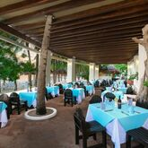 Grand Oasis Palm Hotel Picture 13