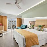 Riu Playa Park Hotel Picture 6