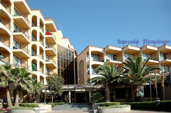 Holidays at Flamingo Hotel in Playa de Palma, Majorca