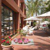 El Palmeral Hotel Picture 11