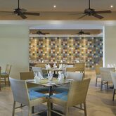 Westin Punta Cana Resort and Club Picture 13