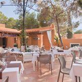 Azuline Club Cala Martina Ibiza Picture 8