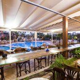 Alba Seleqtta Hotel Picture 12