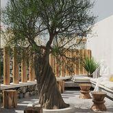 Eliros Mare Hotel Picture 8