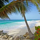 Turtle Beach by Elegant Hotels Picture 14