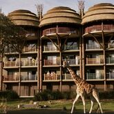 Disney's Animal Kingdom Lodge Picture 8