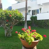 El Sombrero Apartments Picture 9