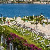 Baia Bodrum Hotel Picture 3
