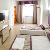 Bronze Hotel Picture 5