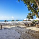 Bougainvillea Barbados Picture 16