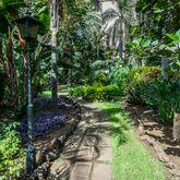 Blue Sea Costa Jardin & Spa (ex Diverhotel Tenerife Spa & Garden) Picture 11