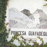 Princesa Guayadeque Hotel Picture 10