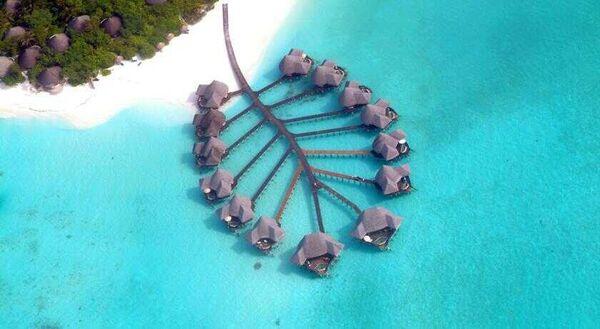 Holidays at Coco Palm Dhuni Kolhu Hotel in Maldives, Maldives
