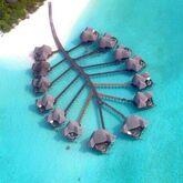 Coco Palm Dhuni Kolhu Hotel Picture 0