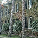 Jardin Milenio Hotel Picture 3