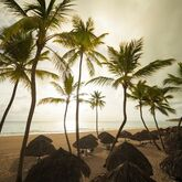 Tropical Princess Beach Resort & Spa Picture 3