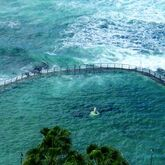 Oceano Vitality Hotel Picture 2