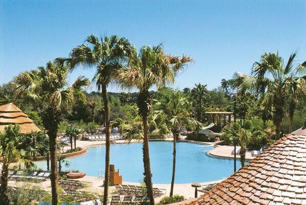 Holidays at Disney's Animal Kingdom Lodge in Disney, Florida