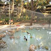 Marti Myra Hotel Picture 12