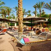 Grand Rotana Resort Picture 14