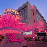 Flamingo Hotel Picture 13