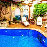 Kassandra Village Resort Picture 6