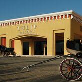 Tulip Resort Picture 10