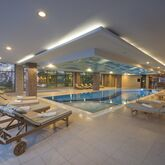 Aydinbey King's Palace Spa & Resort Picture 2