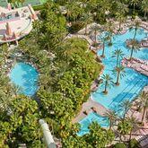 Flamingo Hotel Picture 0