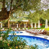 Kassandra Village Resort Picture 9